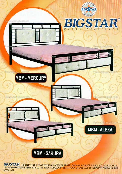 BIGSTAR Bunk Beds